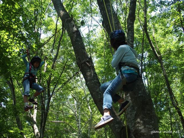木登りんぐ2