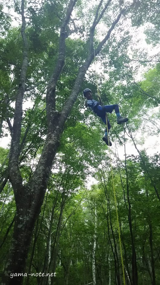 森の中で木登りする少年