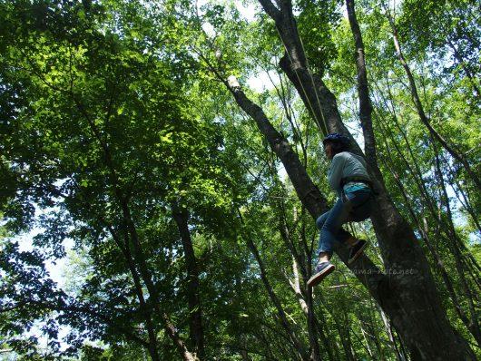 森の中で木登りする少女