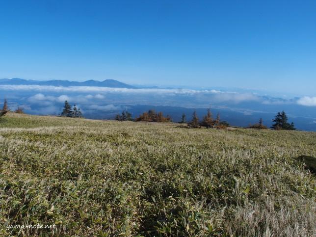 北八ヶ岳20151015