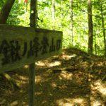 シャクナゲの森へ、鍬ノ峰