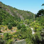 Arrow Gorge – Sawpit Gully Track