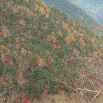 ぐるり南アルプス、秋の中へと
