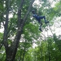 木登りんぐ,白馬,森遊び